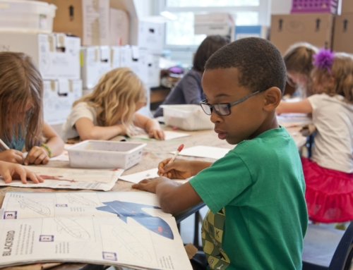 IEPs and 504 Plans- Helping Your Child Succeed Academically